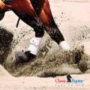 Splint Boots von Classic Equine