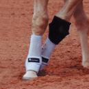 Knee Boots von Classic Equine, Farbe schwarz