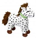 Pony Anton PFERDEFREUNDE