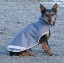 Bucas Hunde Decke 60cm - div Farben
