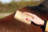 "5""  SleekEZ® Horse Grooming Tool"